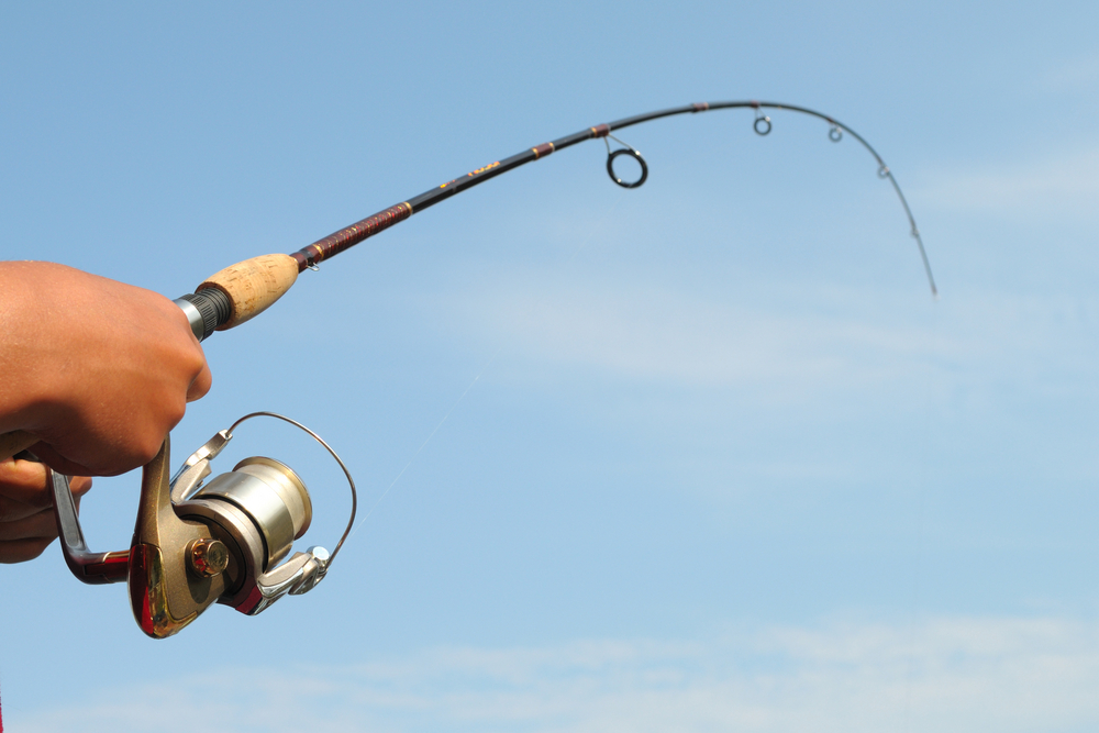 The amazing supply chain of a fishing rod all things for Best all around fishing rod