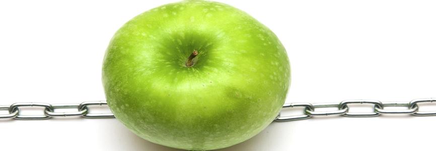 apple inc logistics supply chain