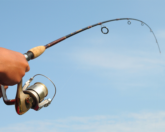 The Amazing Supply Chain Of A Fishing Rod All Things Supply Chain